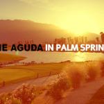 Palm Springs: LGBT PRIDE IN ISRAEL