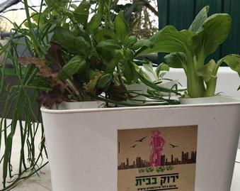 Tel Aviv's Rooftop Farm Grows Fresh Food for Thousands